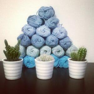 si, il mio cactus è rock!